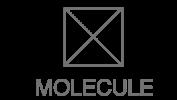 Logo_Molecule_web